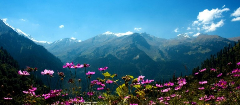 Himachal Travel Guide